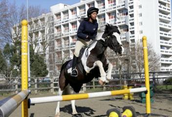 horsebox insurance and horsebox breakdown cover